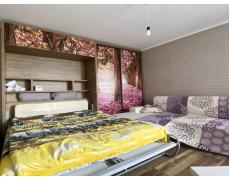 Кровать трансформер со шкаф-купе